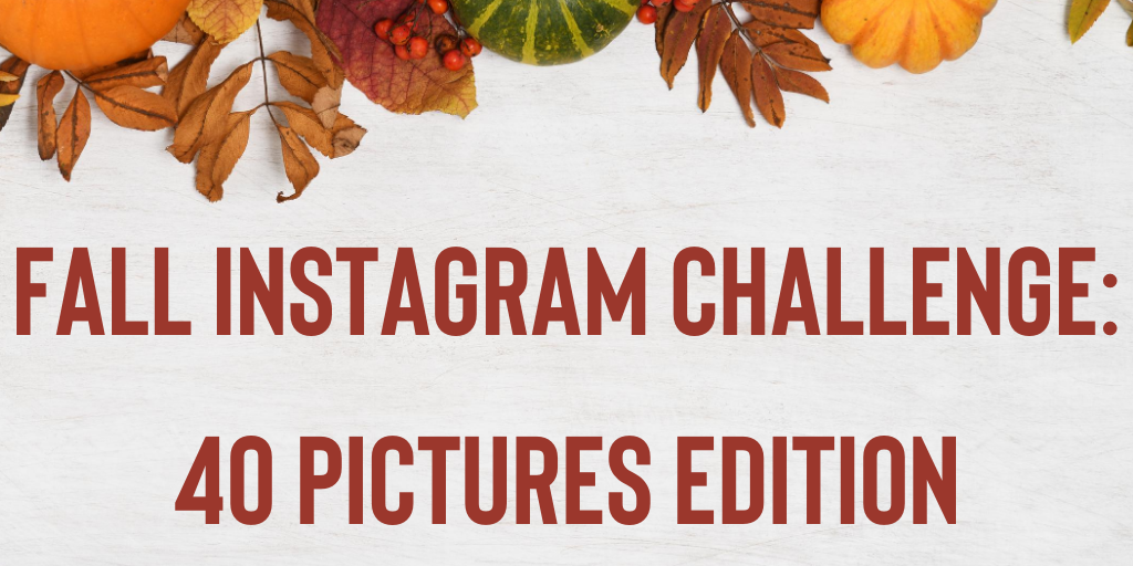 Fall Instagram Challenge: 40 pictures edition!