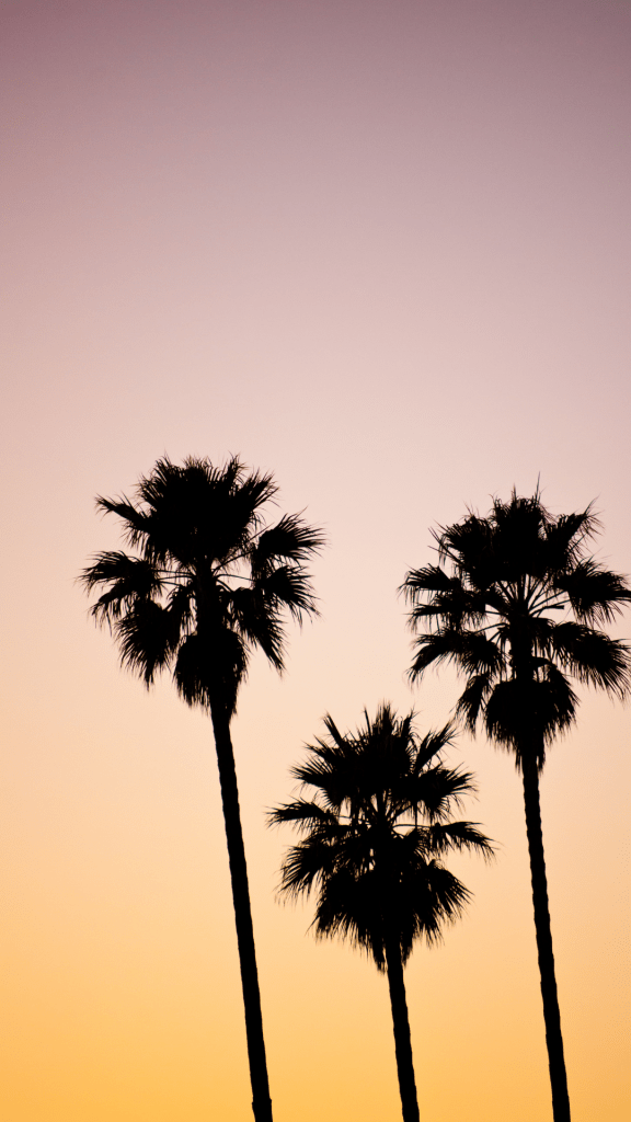22 Summer Aesthetic Phone Wallpapers For 2021