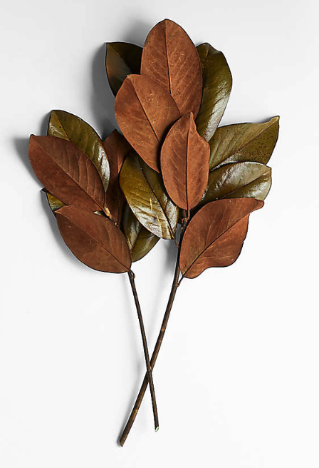 Fall 2021 Home Decor Trends: Fall Home Decor Finds and Favorites!